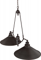 "Bridgeview ORB Bronze Metal Shade Island Light 40""Lx28""H"