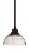 """Neo Industrial Bronze Pendant Light Clear Glass 8""""Wx44""""H"""