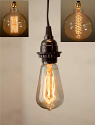 Antique Vintage Edison Bulb Plug In Pendant Light Swag Lamp 3 Sizes